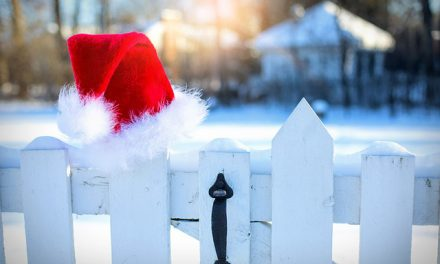 Can insurance save Christmas?