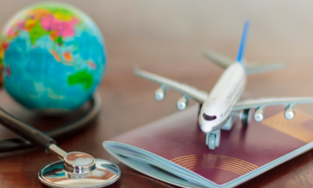 Which insurers help clients obtain better medical care abroad?